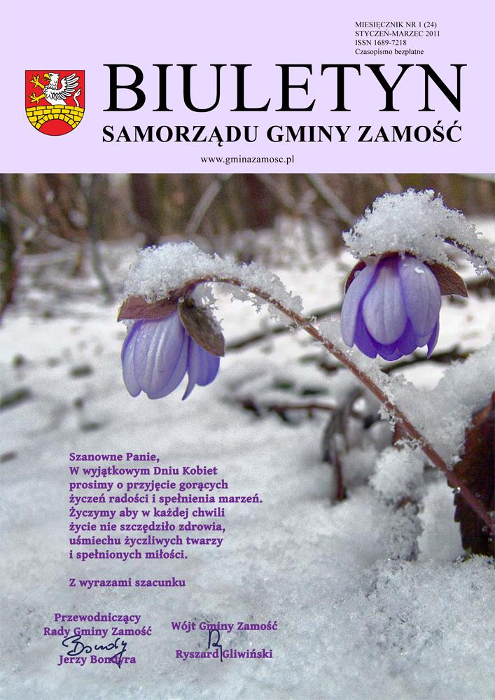 2011-1-1 kopia